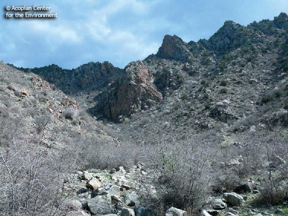 peregrine-habitat2