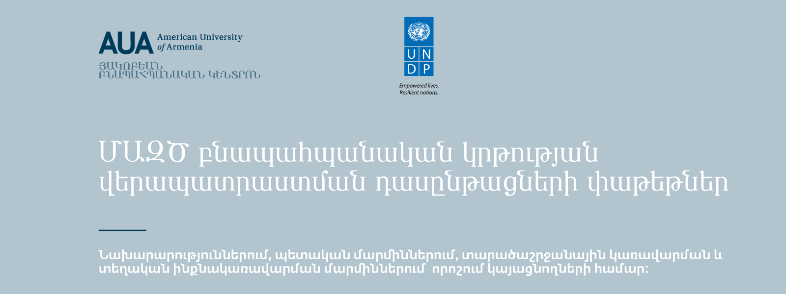 UNDP_ARM_Web
